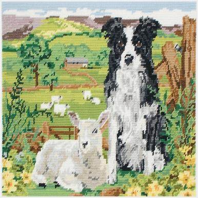 MR7004 Border Collie And Lamb