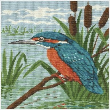MR83332 Kingfisher
